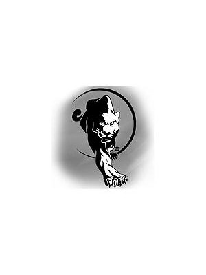 Kung Fu San Soo Series Titles