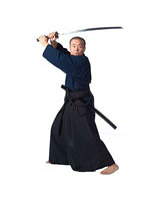 Nishiuchi Traditional Okinawan Kobudo Weaponry Series Titles