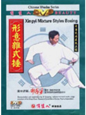 Hsing-I Mixed Styles Boxing with Di Guoyong
