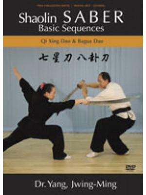 Shaolin Saber Basic Sequences