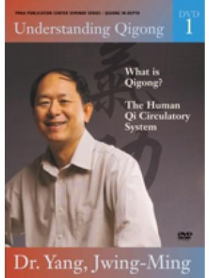 Understanding Qigong DVD 1