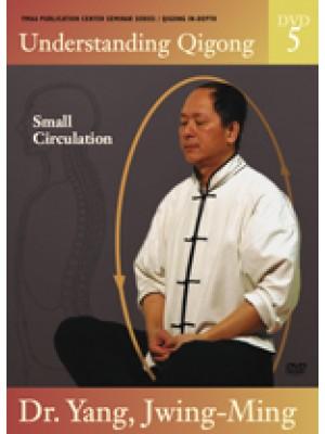 Understanding Qigong DVD 5